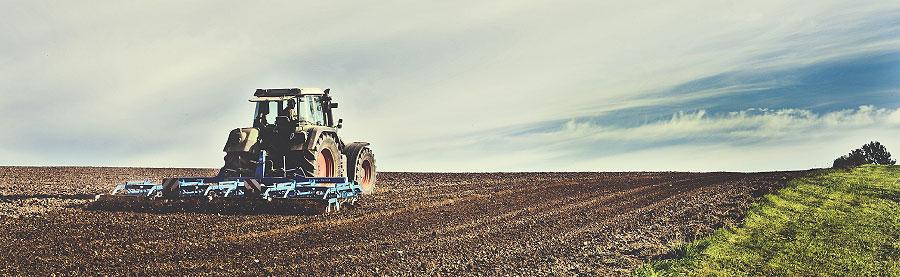 landwirtschaft viehzucht anbau